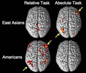 El Factor Cultural Influye en el Modo de Trabajar del Cerebro Psycho10