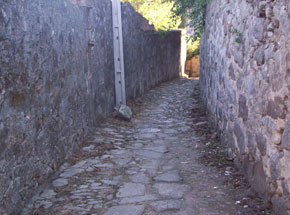 Santa Marinha Gaia Calc1310