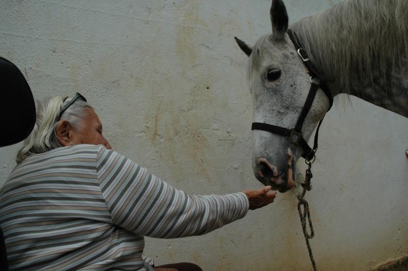 Ce qui est fait avec nos chevaux Dsc_0027