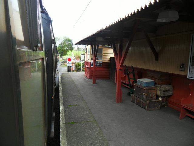 Sejour in Kent Swan0117
