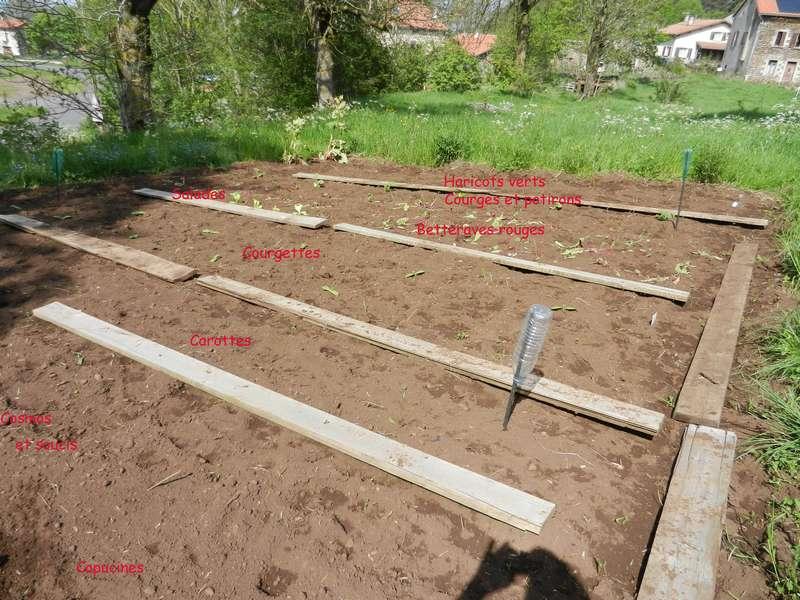 moi aussi mon jardin, il se transforme 27_5_216