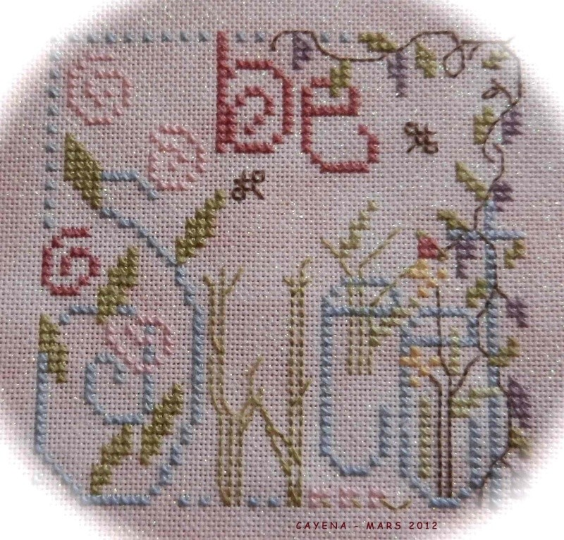 Un petit Shepherd's Bush Shephe10