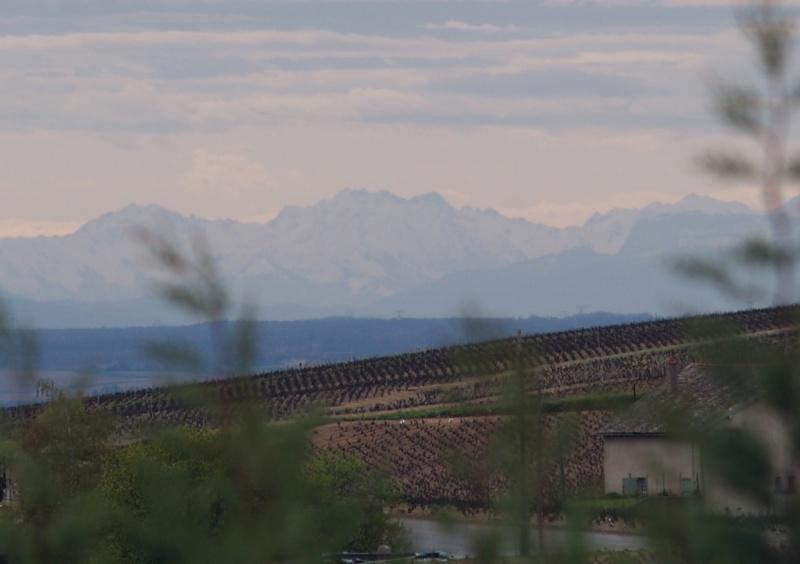 Paysages - Nature - Page 3 Alpes210