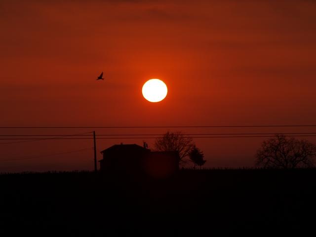 Paysages - Nature Soleil10