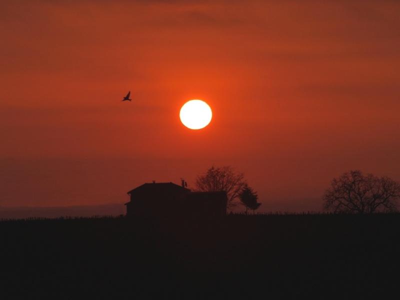 Paysages - Nature Soleil11