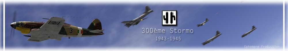 Bannières 300ème Stormo Stormo11