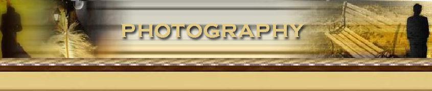 photography I_logo10
