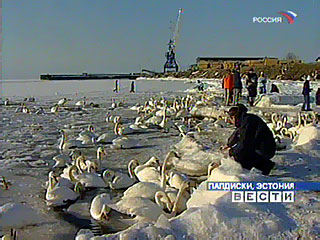 Эстонский Палдиски - город брошенных русских B_390810