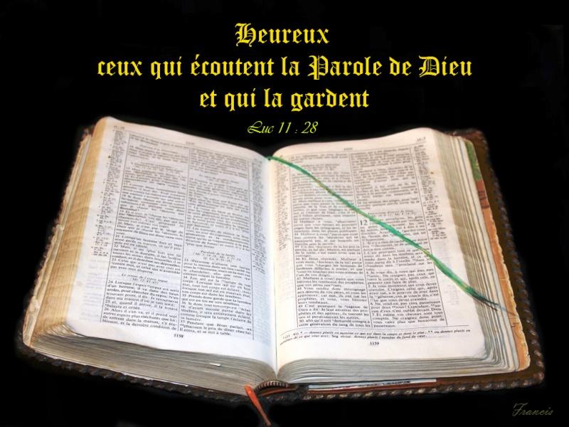 Suivre le bon Berger... Luc_1112