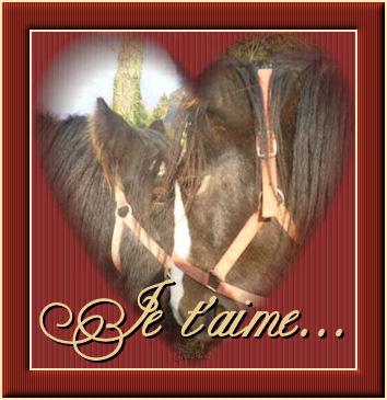 Votez pour le plus beau montage de St Valentin! Cadre_11