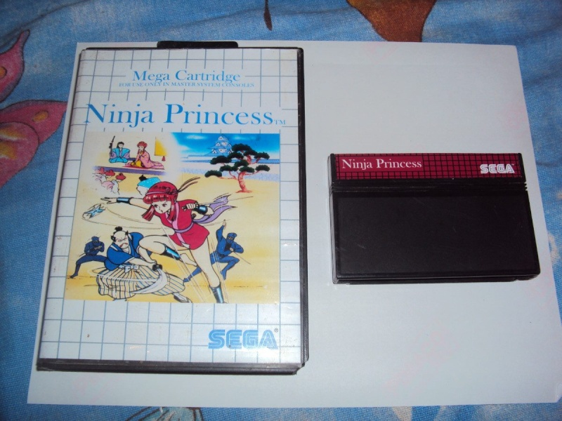 Ninja princess Ninja_10