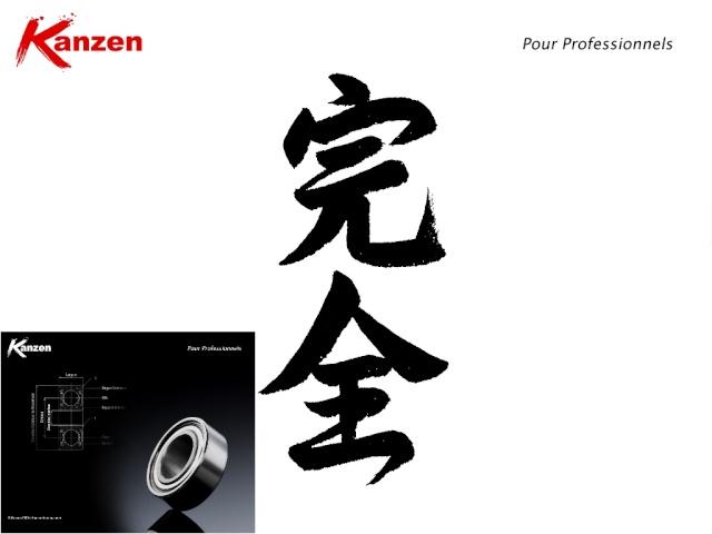 Demontage et upgrade GearBox V.2 Kanzen11