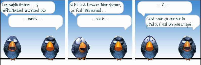 Les Birds Dessinés Hemmor10