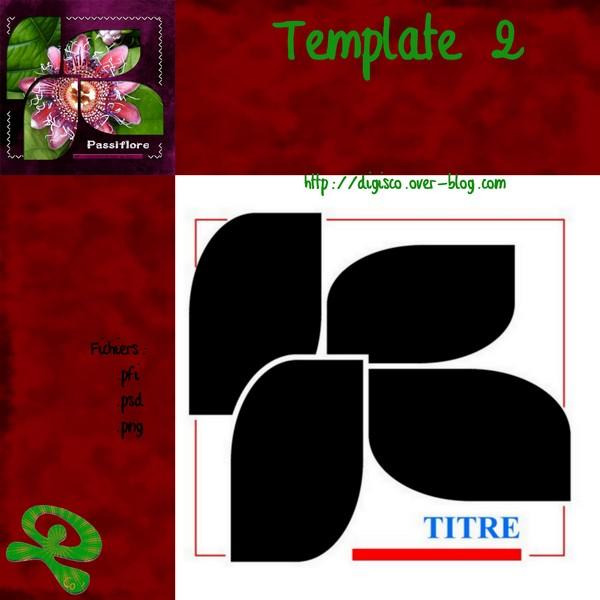 template 2 chez digisco Previe12
