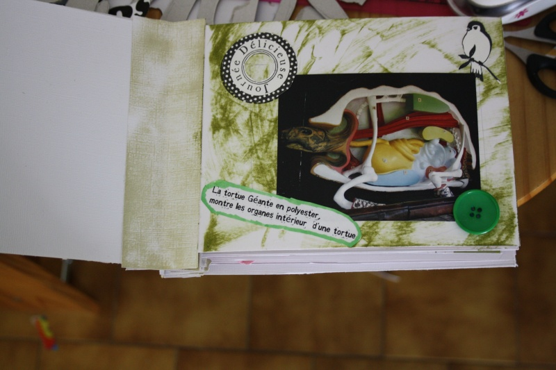 Mini album de Mai - Page 3 Img_2315