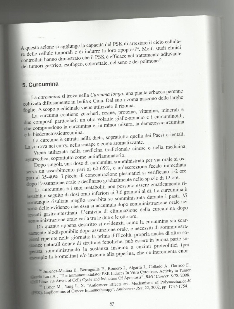 CURCUMA, la più speciale delle spezie!!!! - Pagina 2 Curcum10