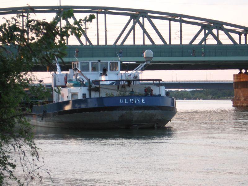 Rijeka Dunav Img_0216