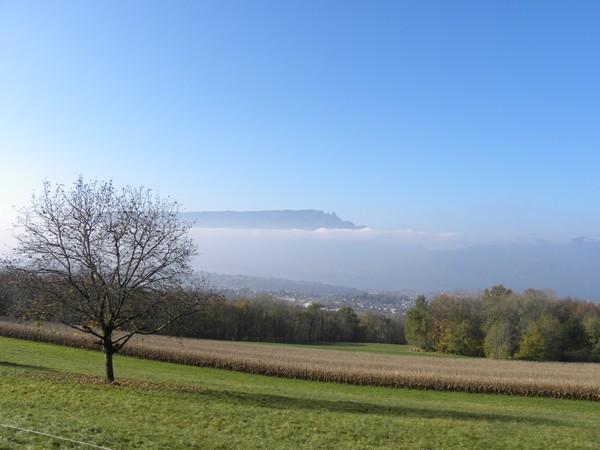 Un joli coin de Savoie ! Rencon25