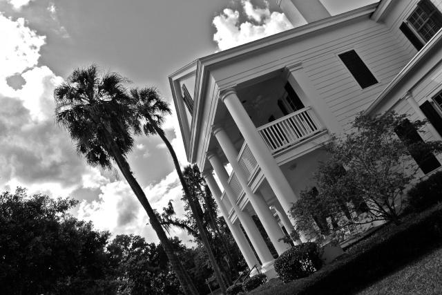 FLORIDA DREAM ! Un séjour inoubliable ! Img_3315