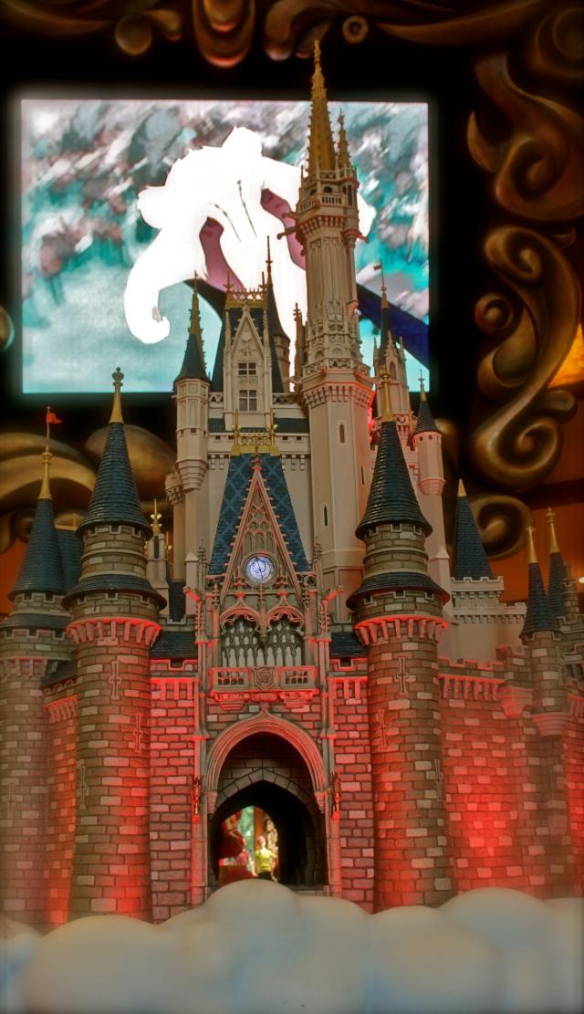 FLORIDA DREAM ! Un séjour inoubliable ! Img_3335