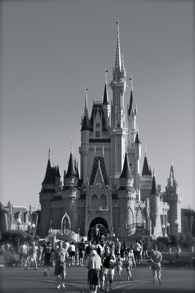 FLORIDA DREAM ! Un séjour inoubliable ! Img_3517