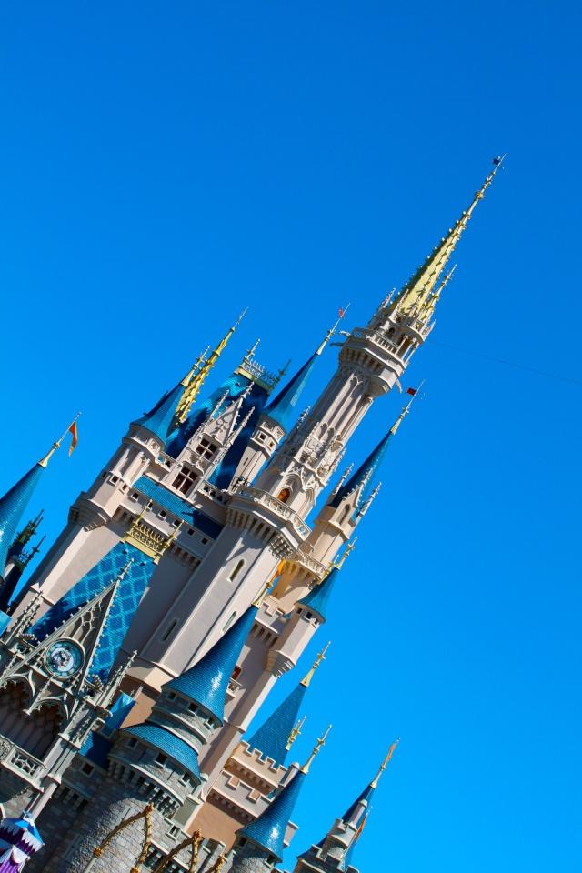 FLORIDA DREAM ! Un séjour inoubliable ! Img_3719