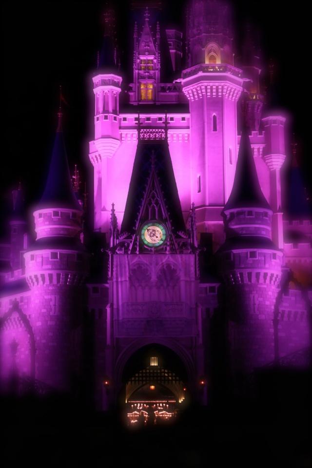FLORIDA DREAM ! Un séjour inoubliable ! Img_4011