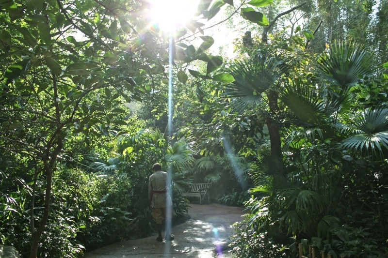 FLORIDA DREAM ! Un séjour inoubliable ! - Page 3 Img_5216