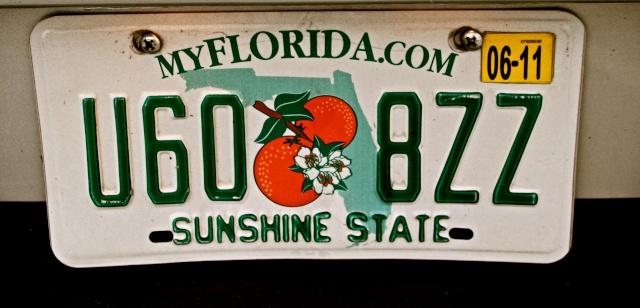 FLORIDA DREAM ! Un séjour inoubliable ! Img_6011