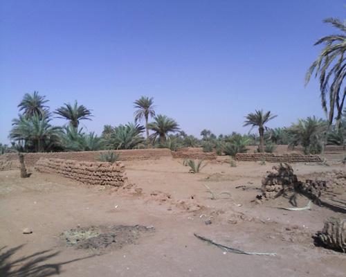 """لقاء مع ضيف المنتدى السيد """" الحاج بوشنة الناجم """" حول موضوع (الفلاحة و الفڨارة) Photo_11"""