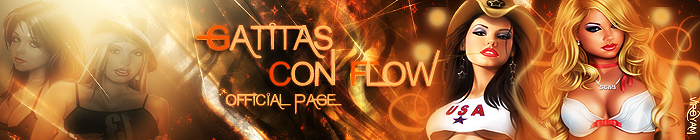 Gatitas Con Flow