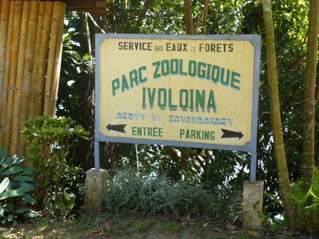 "Parc "" IVOLOINA ""  Madagascar P1010110"