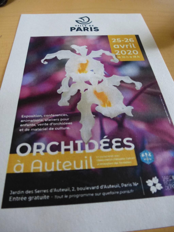 Affiche de l' expo d'orchidées à Auteuil  P1310710