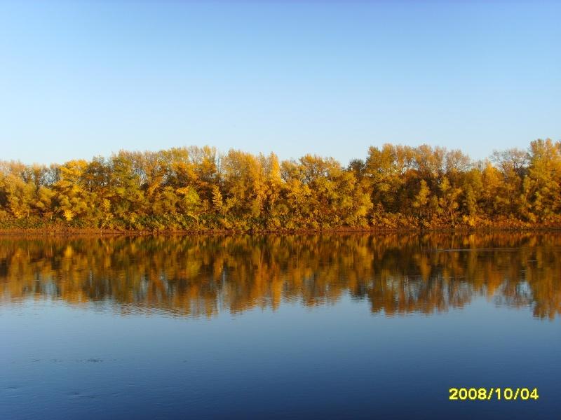 Золотая осень!!! Ssl25010