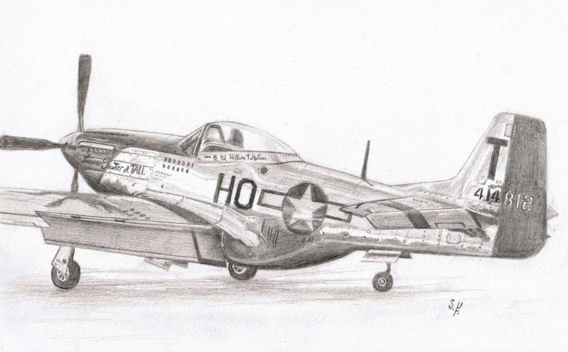 Passe temps. P-51_d10