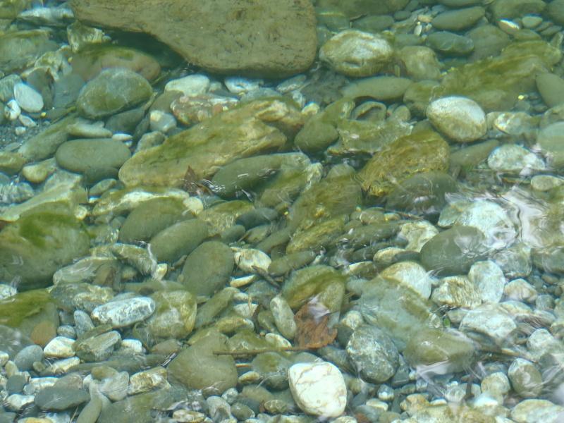 Depuis un certain temps, me voilà devenu amoureux des pierres P8140610
