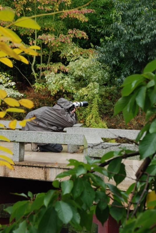 Sortie photo au Parc Paradisio le 05 octobre : Les photos - Page 2 Dsc_3912