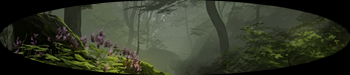 Zones Forestières