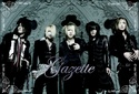 The GazettE Gazett11