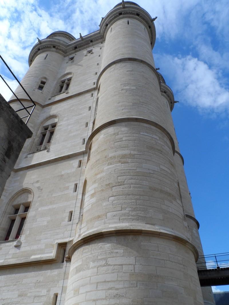 le château de Vincennes - Page 2 Sam_0342