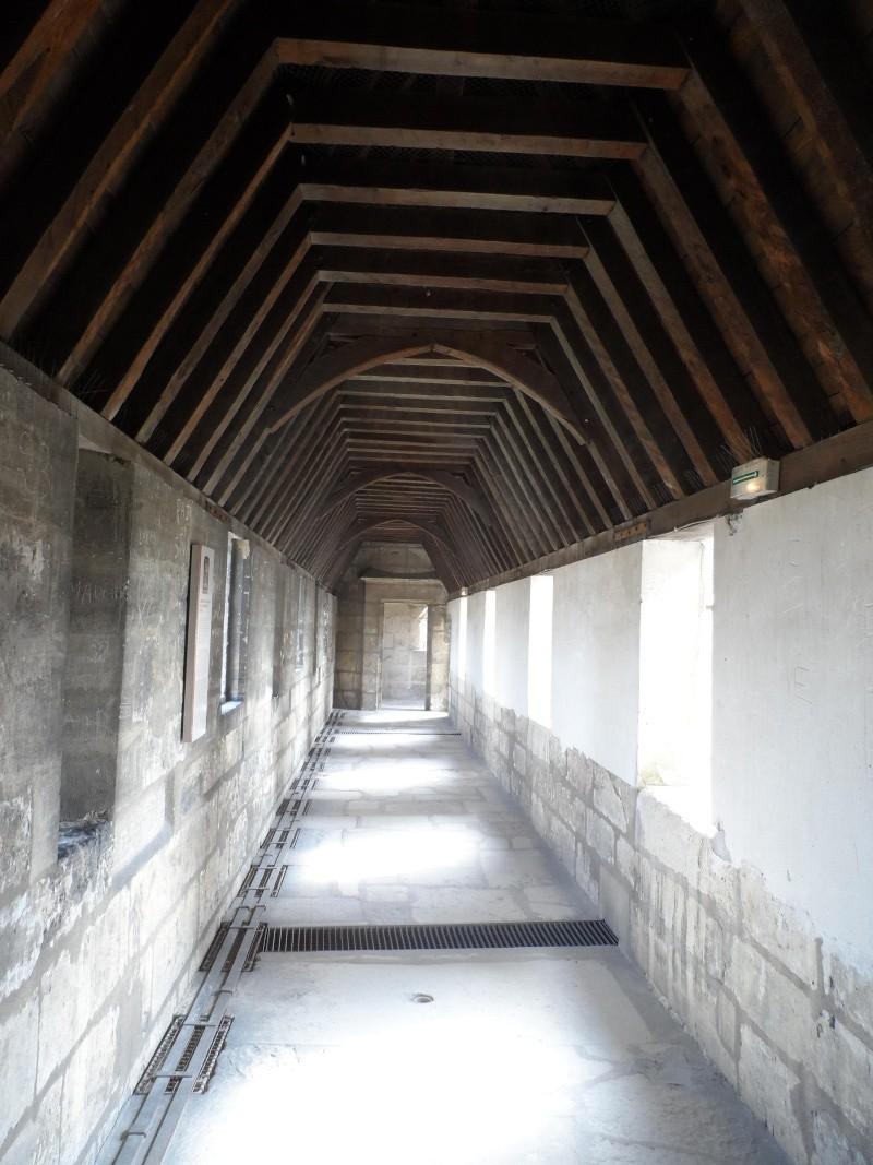 le château de Vincennes - Page 2 Sam_0344