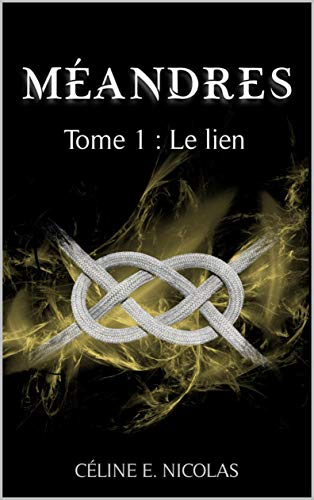 MÉANDRE (Tome 01) LE LIEN de Céline E. Nicolas 41trnn10