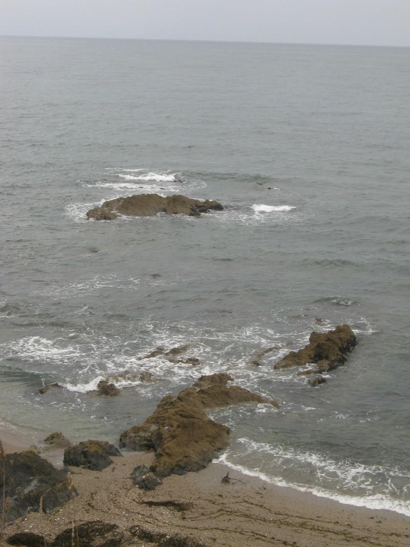 un peu d'air marin Photo_74