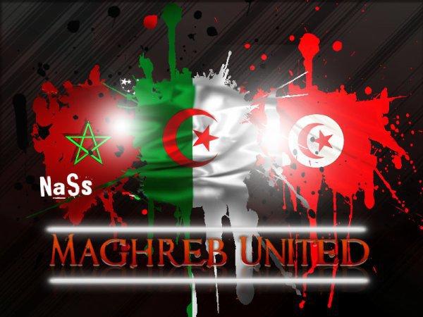 le forum des maghrebains et les amis du maghrebe dans le monde