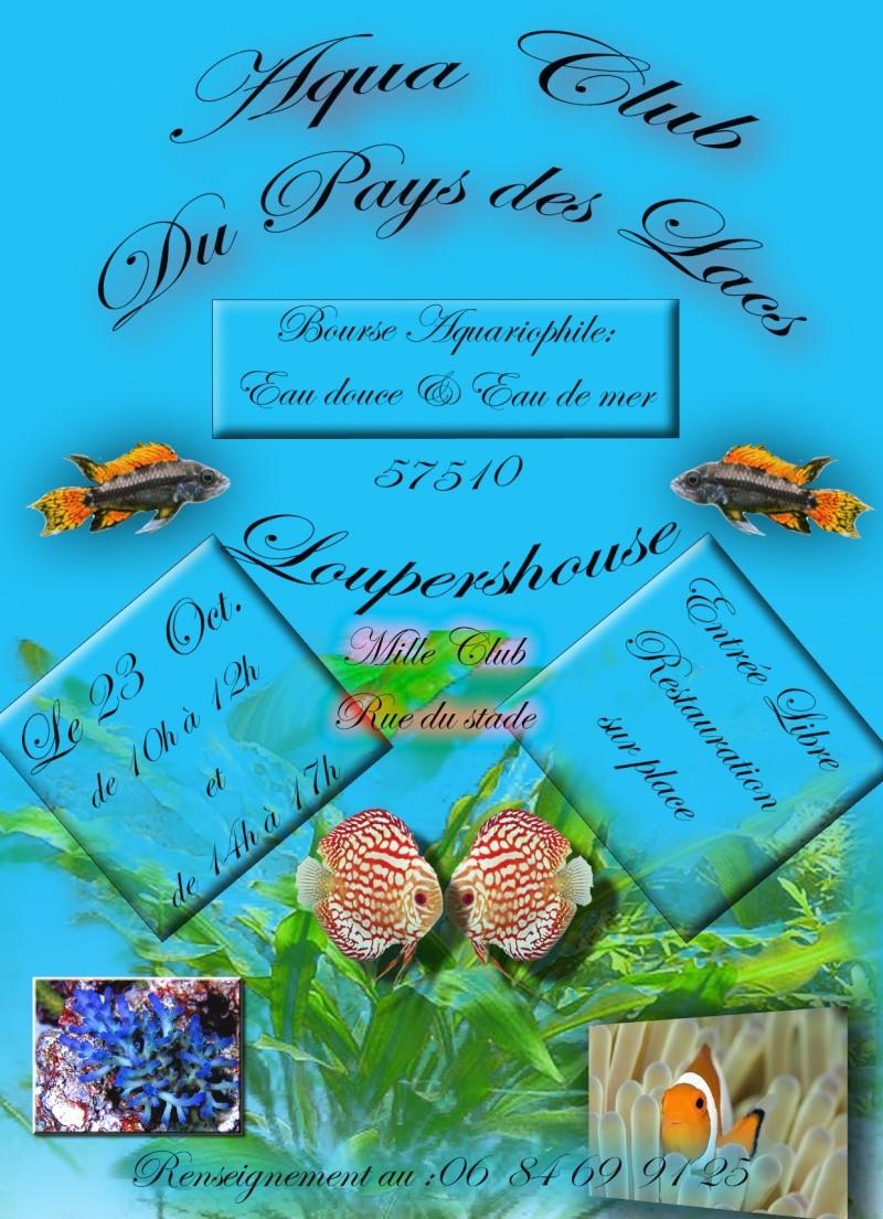 Bourse de l'aquaclub du pays des lacs 23 octobre 2011 Bours_12