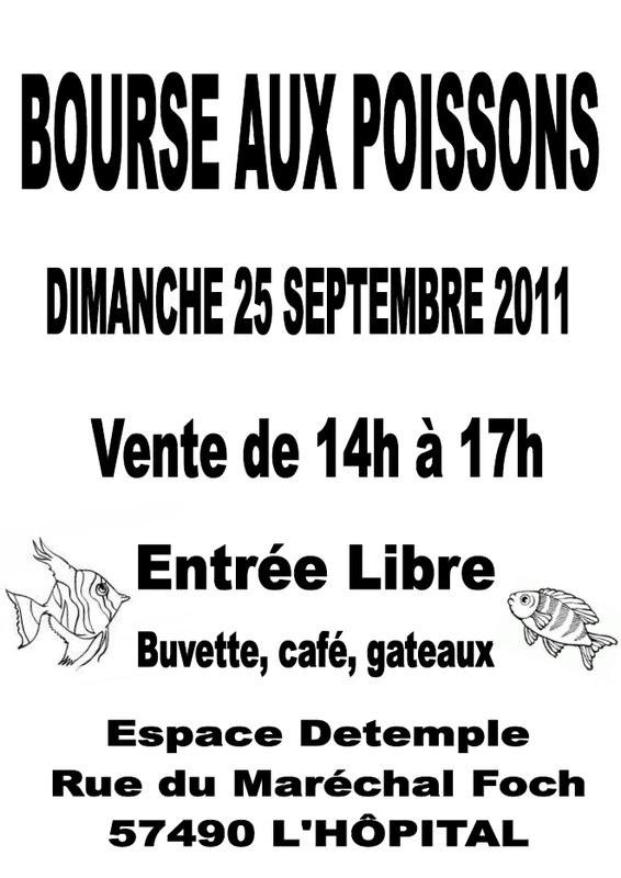 Bourse à L'Hopital le 25 septembre 2011  Nouvel10
