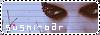 Nos boutons Untitl28