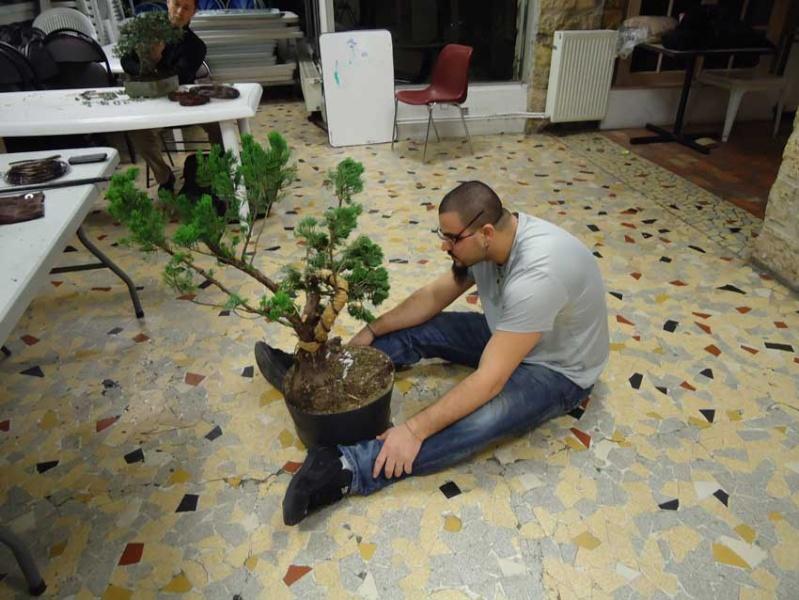 Gros Gros Juniperus 2012_027