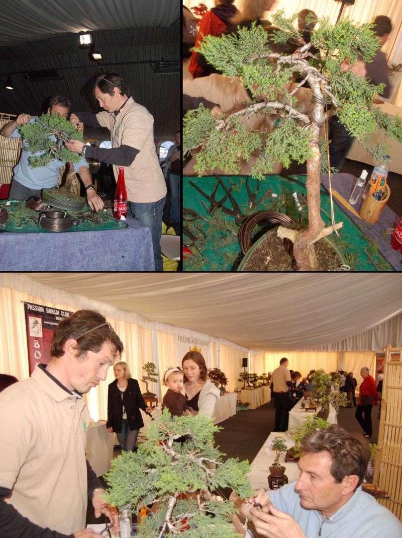 fête des plantes de villefranche sur mer Damo10