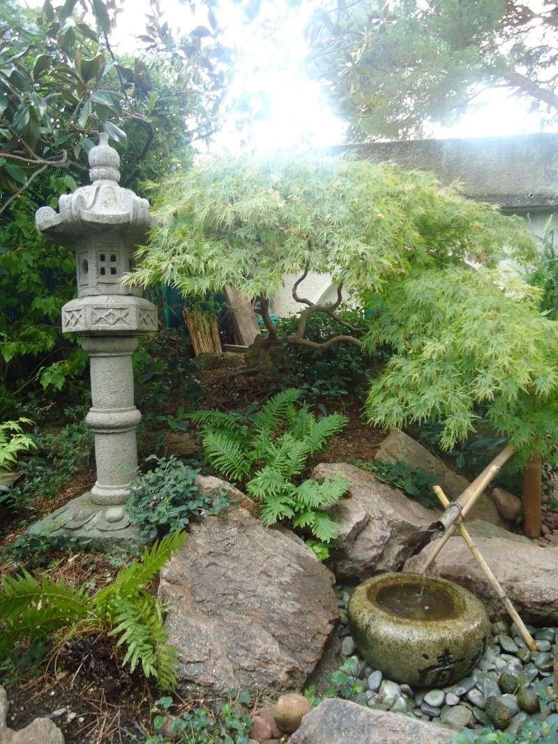 Visite du jardin Jean Pierre Cardinal Dsc09411